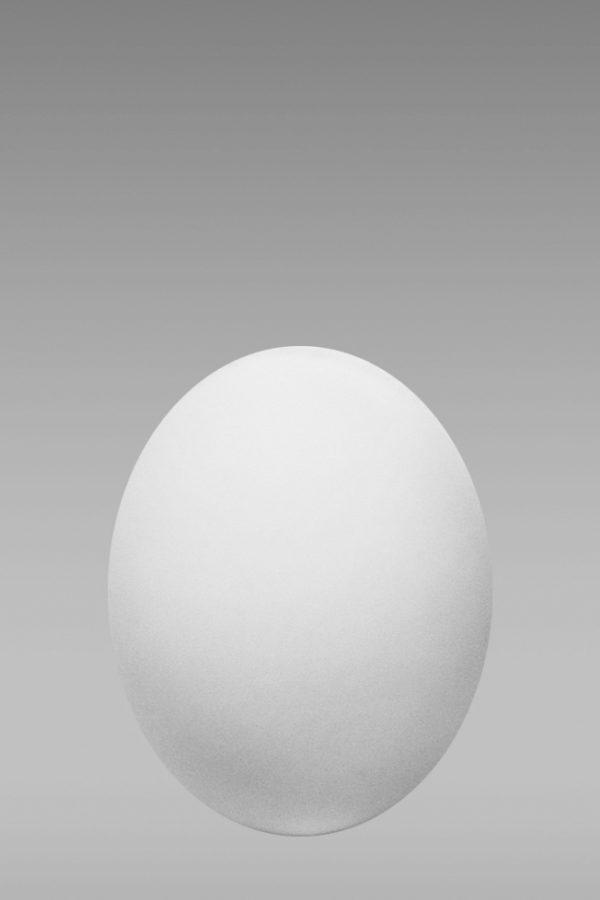 фарфоровое яйцо